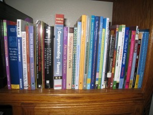 a photo of some of the professional books in my To-Be-Read pile